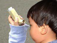 asma.jpg