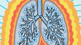 Trasplante pulmonar, una opción terapéutica que crece a pasos agigantados
