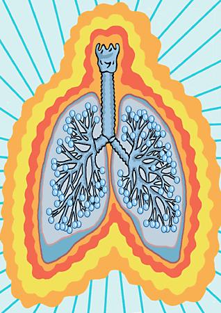int_pulmonb.png