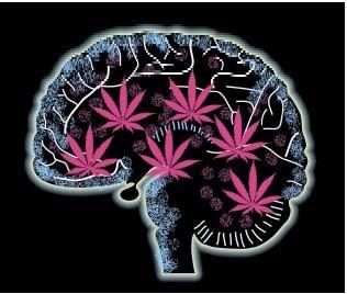 cannabis_mental_health1.jpg