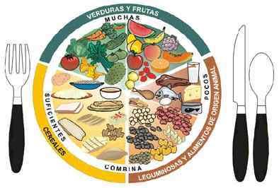 ls-nutricion.jpg