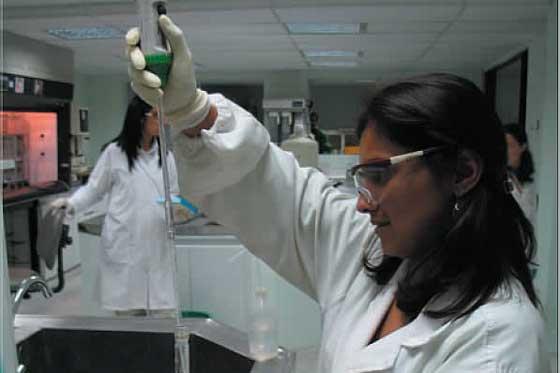 Cancer de vejiga-estudios
