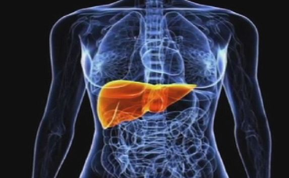 Quistes simples del hígado