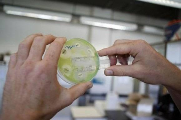 Alerta en Francia por un virus relacionado con el resfriado común