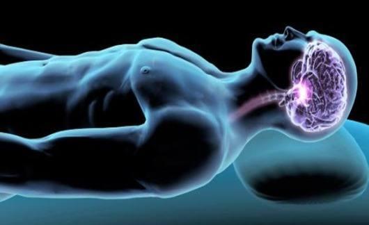 cerebro-sueño