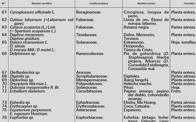 lista-plantas-toxicas5
