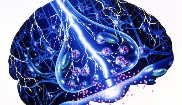 Epilepsia, convulsión