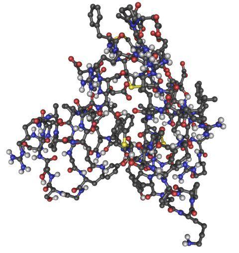 Receptores de Somatomedina