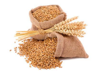 astenia-primaveral-germen-de-trigo