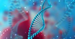 Micro ARN: qué es y cuál es su función