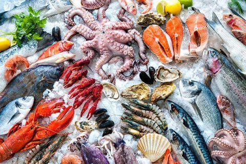 Los mejores alimentos para fortalecer nuestro sistema inmunitario pescado