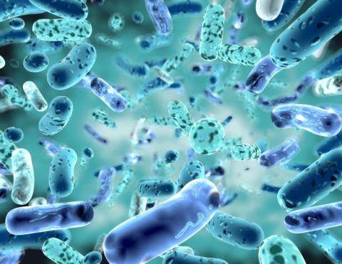 Como cortar diarrea con varios trucos remedios caseros bacterias