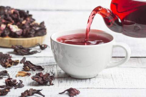 Mejores remedios naturales contra gastritis infusion flores hibisco