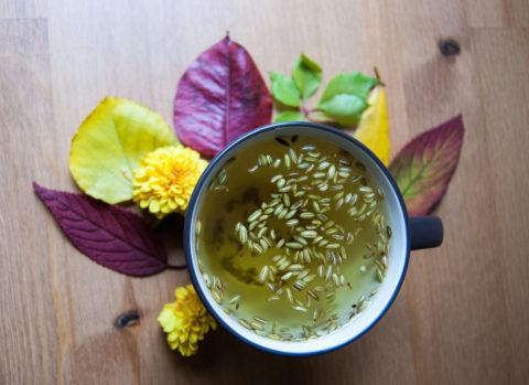 Mejores remedios naturales contra gastritis infusion hinojo